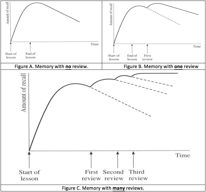 memory-graphs
