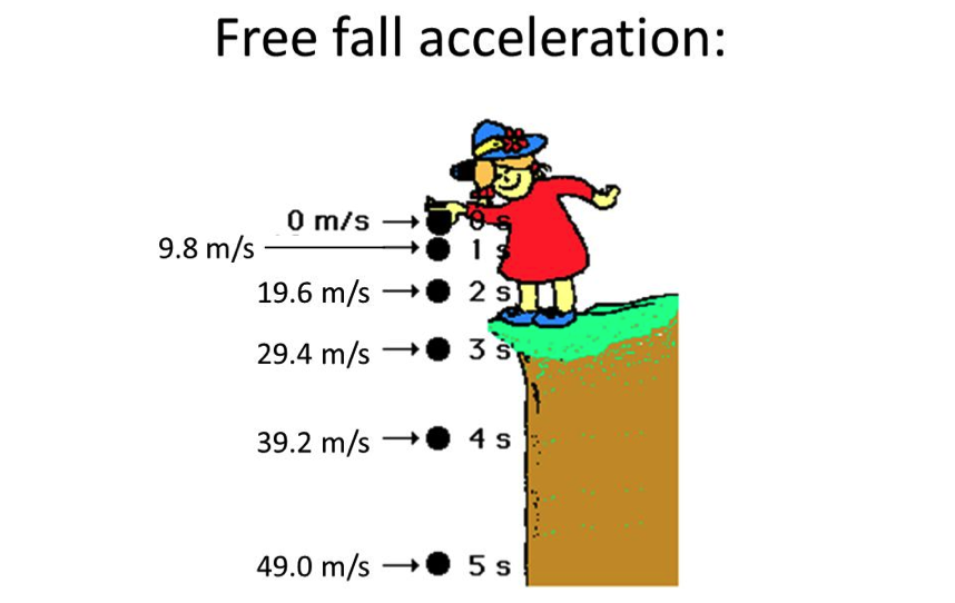 free-fall-accerelation