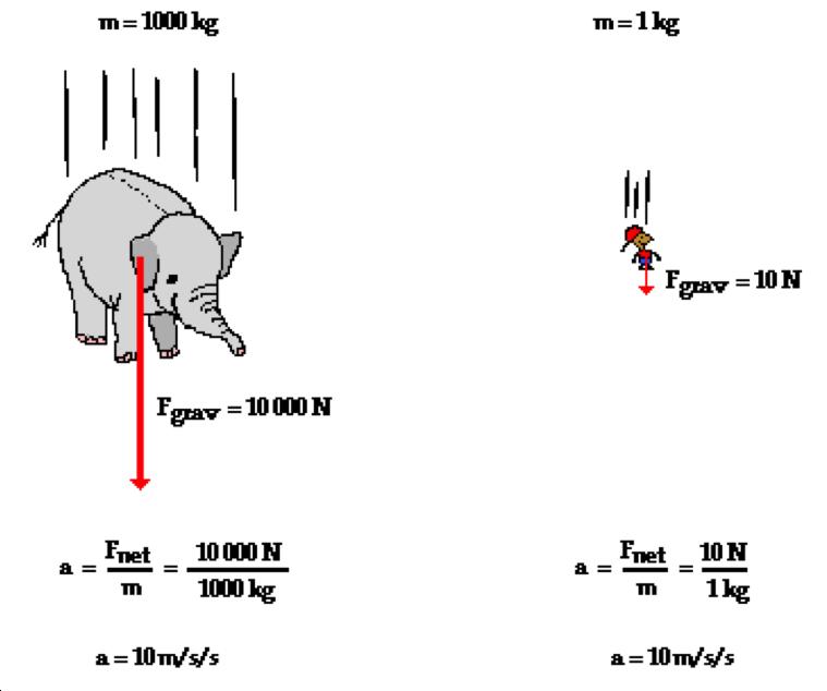 free-fall-explaination